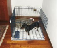 Ferplast Dog Training вольер загон для маленьких собак