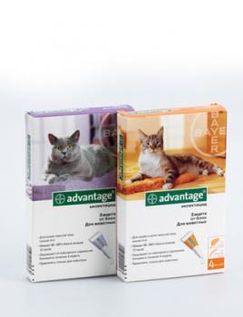 Адвантейдж инсектицидный препарат для кошек