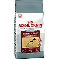 Royal Canin Energy 4800 Сухой корм для Спортивных и Рабочих Собак