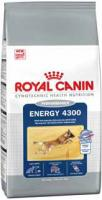 Royal Canin Energy 4300 Корм для Собак при Кратковременных Нагрузках